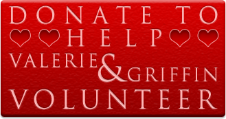 Donate To Valerie and Griffin's Volunteer Budget